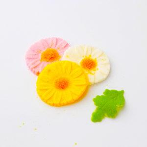 菊(白)(花)